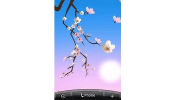 Gražus Sakura