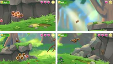 abeille Odyssey